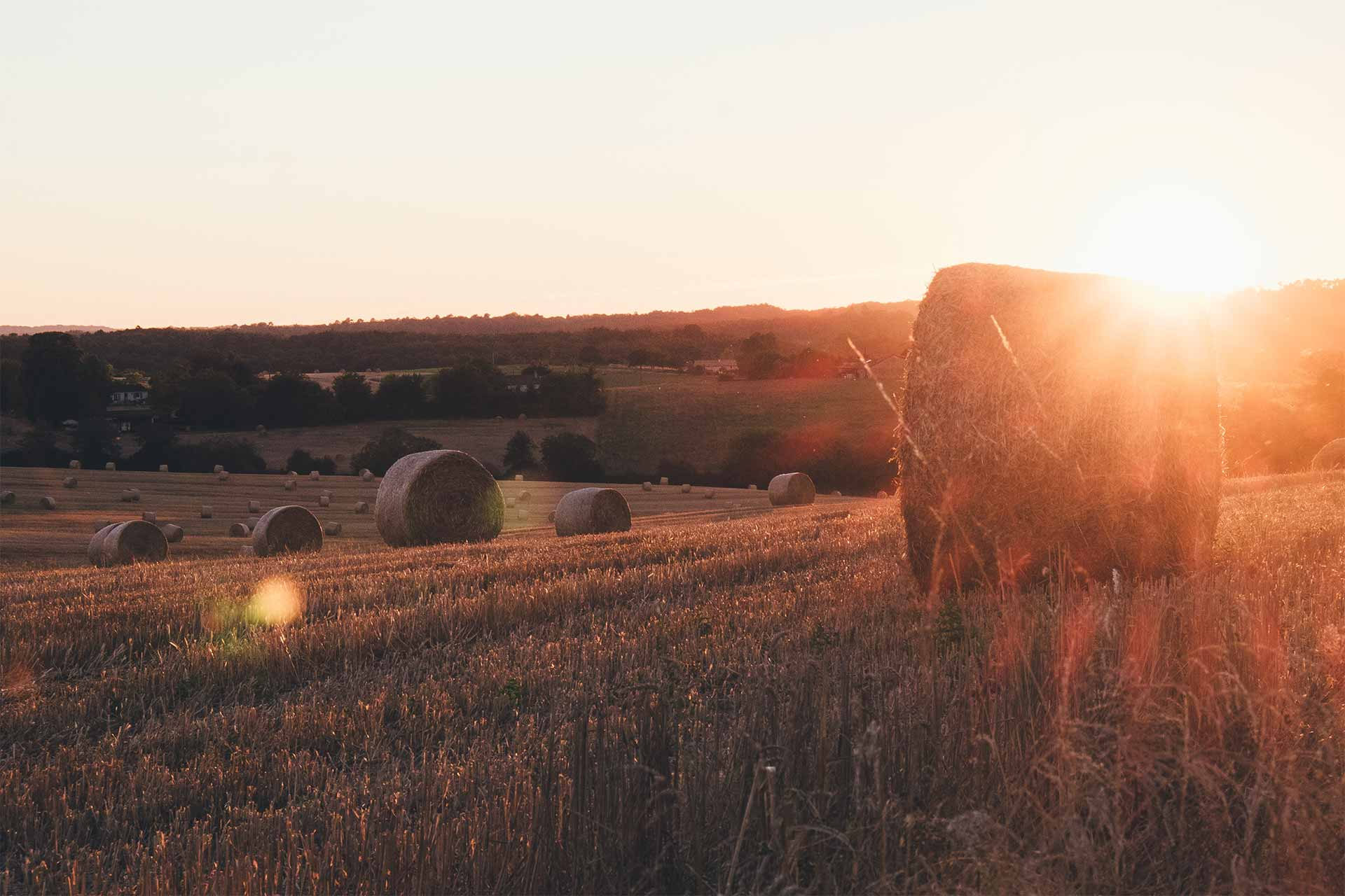 Countryside-header